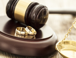Michigan Divorce & Family Law Attorneys | Aldrich Legal Services - fam2
